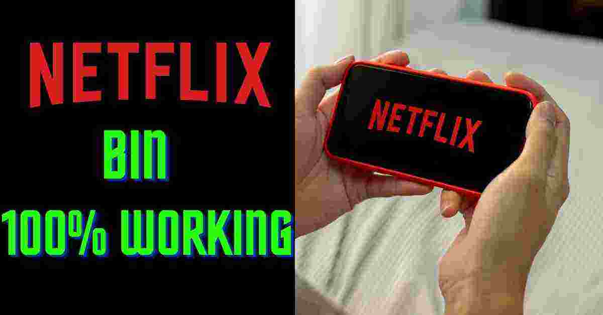 Netflix Bin