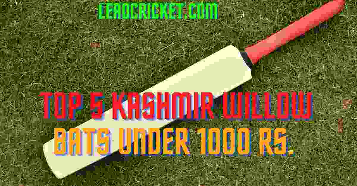 Kashmir Willow Bats Under 1000Kashmir Willow Bats Under 1000Kashmir Willow Bats Under 1000